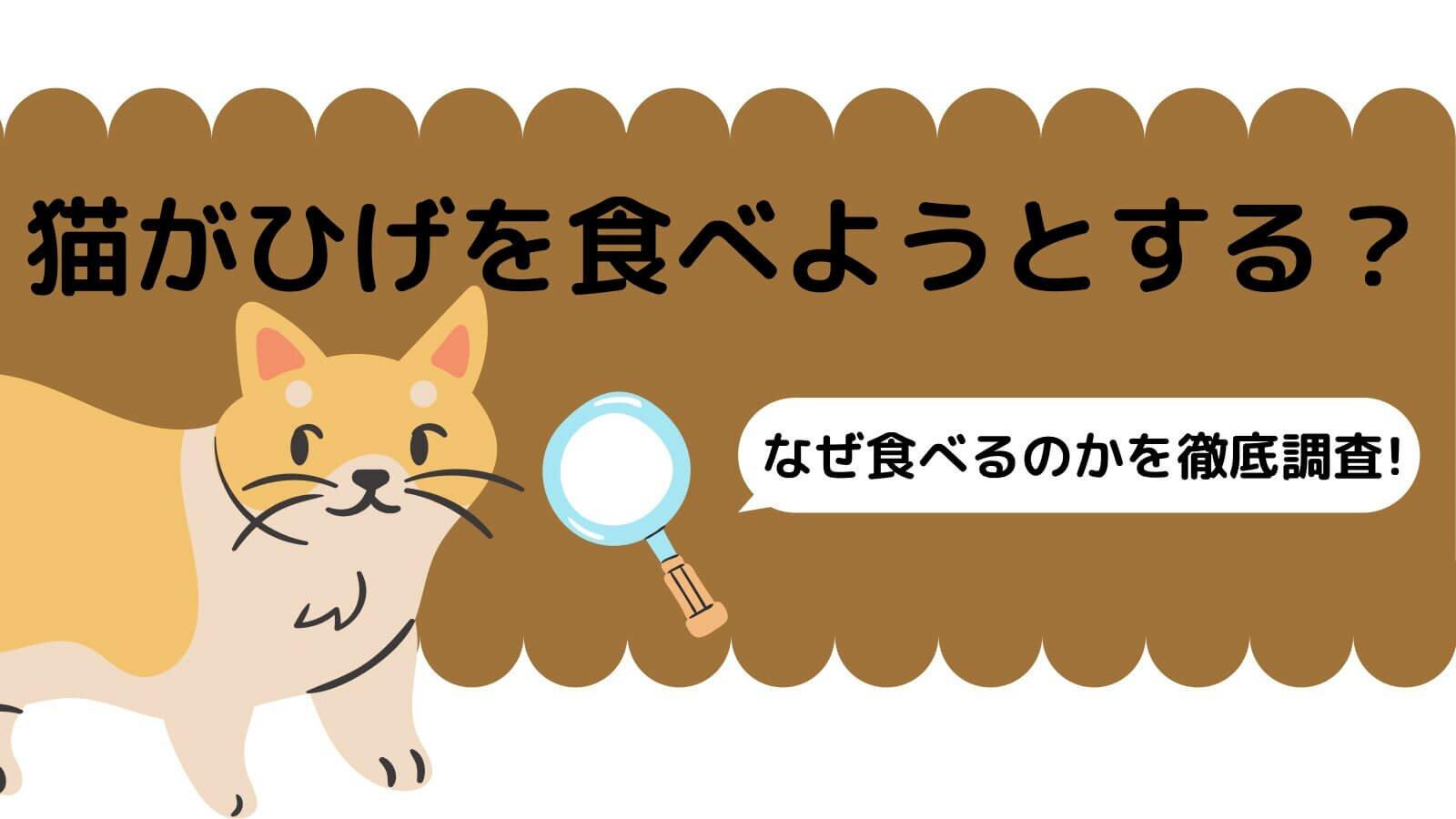 猫がひげを食べようとする